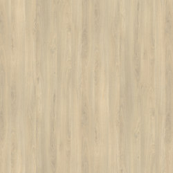 Fjord Beech Light | Wood panels | Pfleiderer