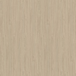 Apollo Oak cream | Wood panels / Wood fibre panels | Pfleiderer