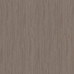 Apollo Oak cinnamon | Panels | Pfleiderer