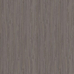 Apollo Oak grey | Panels | Pfleiderer