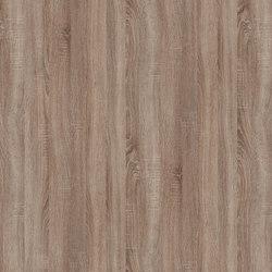 Truffle Sonoma Oak | Wood panels | Pfleiderer