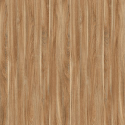 Terra Dakota Oak | Panels | Pfleiderer