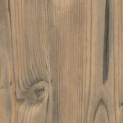 Natural Alpine Spruce | Panels | Pfleiderer