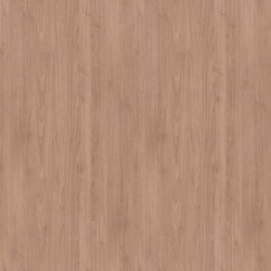 Albany Walnut light | Wood panels / Wood fibre panels | Pfleiderer