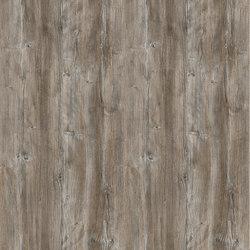 Ponderosa Pine | Planchas | Pfleiderer