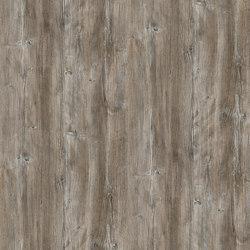 Ponderosa Pine | Pannelli | Pfleiderer