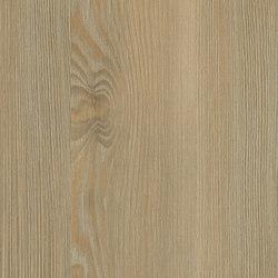 Fano Pine nature | Panneaux de bois / dérivés du bois | Pfleiderer