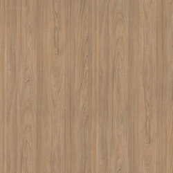 Helvetic Elm Sand | Wood panels | Pfleiderer