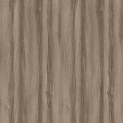 Truffle Baron Elm | Wood panels | Pfleiderer