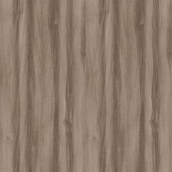Truffle Baron Elm | Planchas de madera y derivados | Pfleiderer