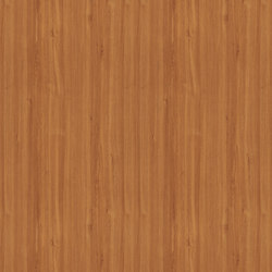 Striped Teak | Wood panels | Pfleiderer