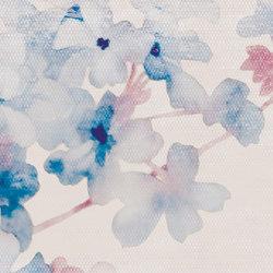 Cherry | Wall art / Murals | Inkiostro Bianco