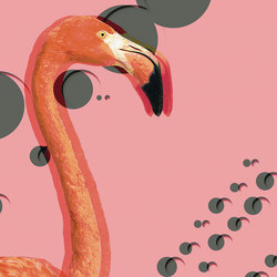 Flamingos | Wall art / Murals | Inkiostro Bianco