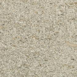I Naturali - Pietre Arenaria Fossile | Planchas | Laminam