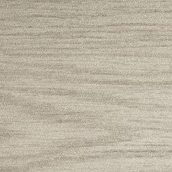 Kauri - Grigio | Platten | Laminam