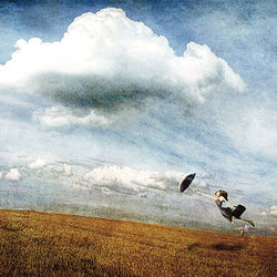 The Wind | Wall art / Murals | Inkiostro Bianco