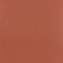 Vintage Pontiac | Faux leather | Camira Fabrics