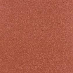 Vintage Pontiac | Cuero artificial | Camira Fabrics