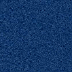 Phoenix Scuba | Tissus | Camira Fabrics
