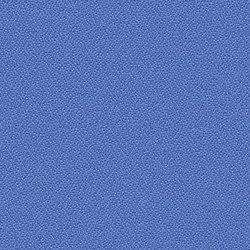 Phoenix Bluebell | Fabrics | Camira Fabrics
