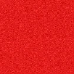 Phoenix Belize | Tissus | Camira Fabrics