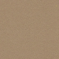 Phoenix Sandstorm | Tessuti | Camira Fabrics