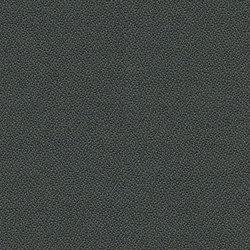 Phoenix Paseo | Fabrics | Camira Fabrics