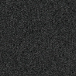Phoenix Sombrero | Fabrics | Camira Fabrics