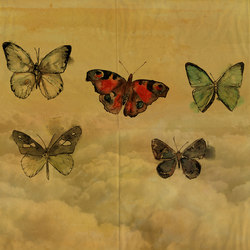 BUTTERFLIES | Wall art / Murals | Wall&decò