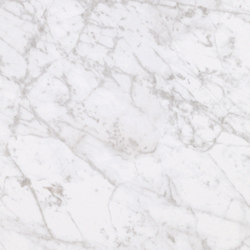 Marmoker bardiglio bianco lappato | Piastrelle ceramica | Casalgrande Padana