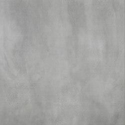 Steeltech grigio lappato | Facade systems | Casalgrande Padana
