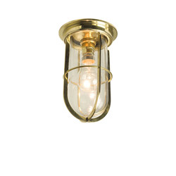 7203 Ship's Companionway With Guard, Polished Brass, Clear Glass | Illuminazione generale | Davey Lighting Limited
