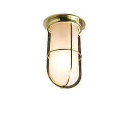 7203 Ship's Companionway With Guard, Polished Brass, Frosted Glass | General lighting | Davey Lighting Limited