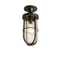 7204 Weatherproof Ships Well Glass Ceiling Light, Weathered Brass, Clear Glass | Éclairage général | Davey Lighting Limited