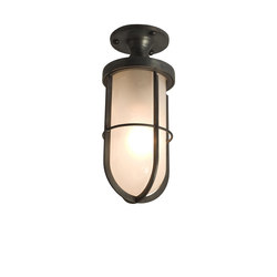 7204 Weatherproof Ships Well Glass Ceiling Light, Weathered Brass, Frosted Glass | General lighting | Davey Lighting Limited