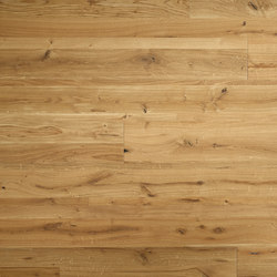 ELEMENTs Galleria Oak rustic | Wood panels / Wood fibre panels | Admonter