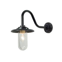 7677 Exterior Bracket Light, 60W, Swan Neck, Painted Black, Clear Glass | Iluminación general | Davey Lighting Limited