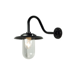 7677 Exterior Bracket Light, 100W, Swan Neck, Painted Black, Clear Glass | General lighting | Davey Lighting Limited