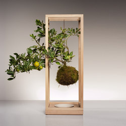 Plant Bondage Ash | Pflanzgefässe | Farrah Sit