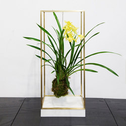 Plant Bondage Marble | Plant pots | Farrah Sit