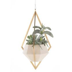 Tetra Planter | Plant pots | Farrah Sit