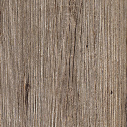 Bio Lumber | Lodge Greige | Platten | Lea Ceramiche