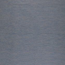 Allium ice blue | Rugs / Designer rugs | Kateha