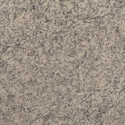 Granite Collection White Dallas | Küchenarbeitsflächen | LEVANTINA
