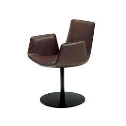 Amelie Armchair | Sedie conferenza | Freifrau Sitzmöbelmanufaktur