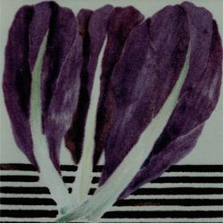 Radicchio | Piastrelle ceramica | La Riggiola