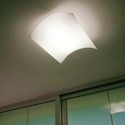 Light Volumes Eco 21C | Allgemeinbeleuchtung | Prandina