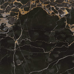 Precious Stones Nero Portoro | Lastre | GranitiFiandre