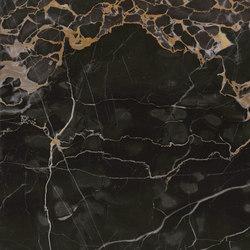 Precious Stones Nero Portoro | Slabs | GranitiFiandre