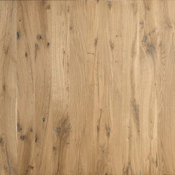 ELEMENTs Reclaimed wood Oak | Panels | Admonter